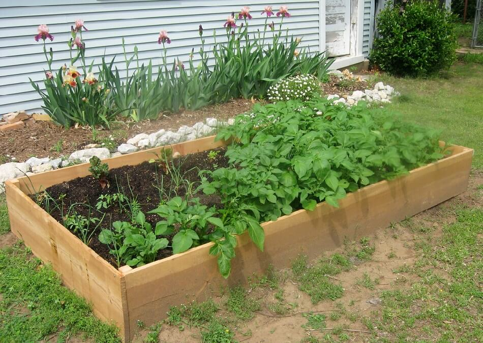 how to build a raised garden bed,