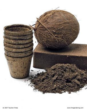 getting to the coir of the matter - finegardening