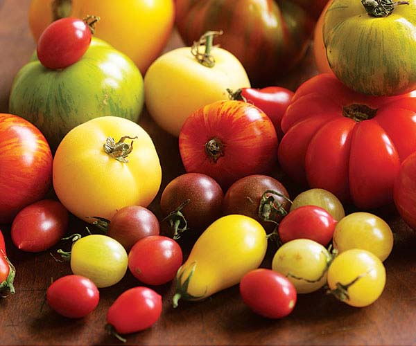 what to do with all those summer tomatoes - finecooking
