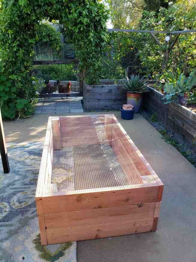 raised garden beds vs. in-ground beds: pros & cons ~ homestead and chill