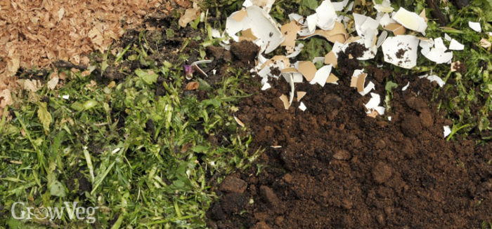 a common-sense guide to using coffee grounds in the garden