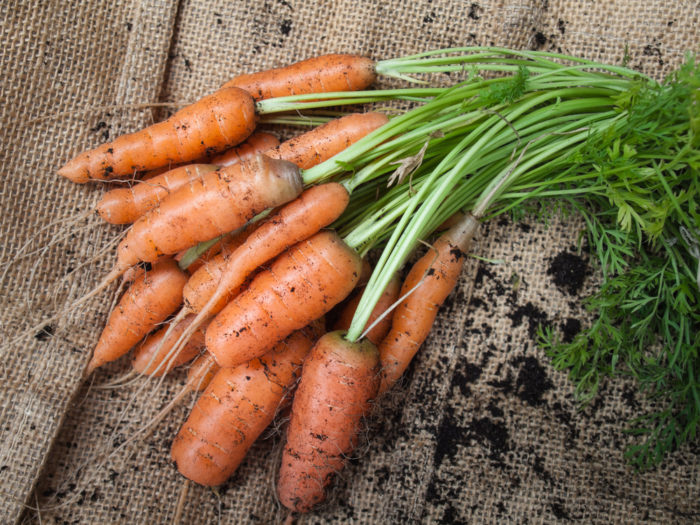 20 plants to grow in your veggie patch this autumn   1 million women