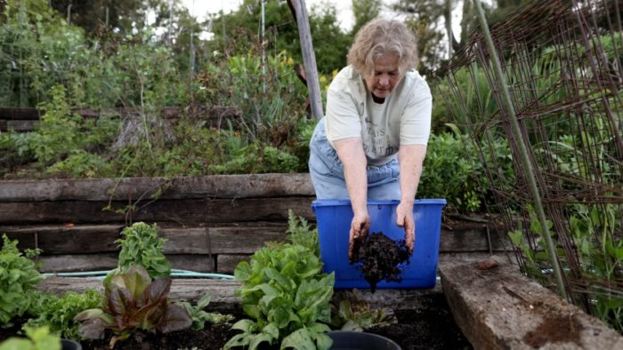 the best soil for a thriving garden is water-absorbing and well-fed