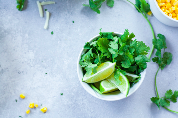 grow coriander at home with this simple guide
