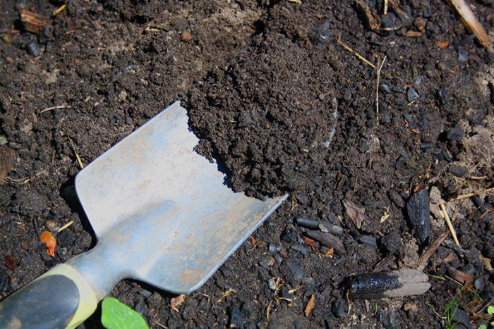 know your garden soil: how to make the most of your soil type