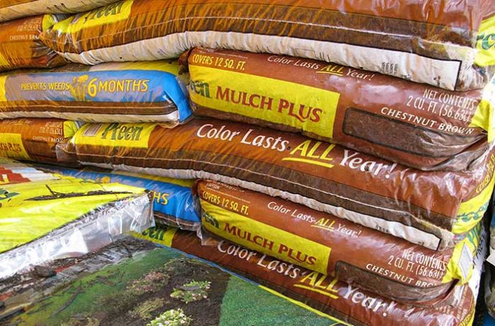why mulch matters | everything you need to know | joe gardener®