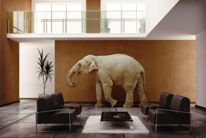 feng shui tips for luck and wealth: 7 ways to use elephant in your home decor