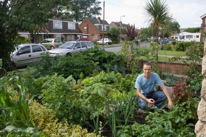 Small Vegetable Garden Plans and Layouts