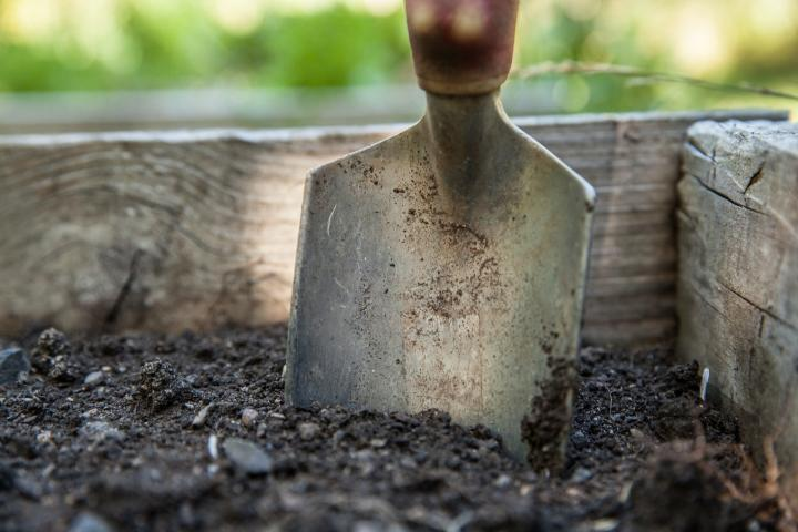 how and when to fertilize your vegetable garden