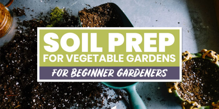 how to prepare soil for vegetable gardens   the tiny life