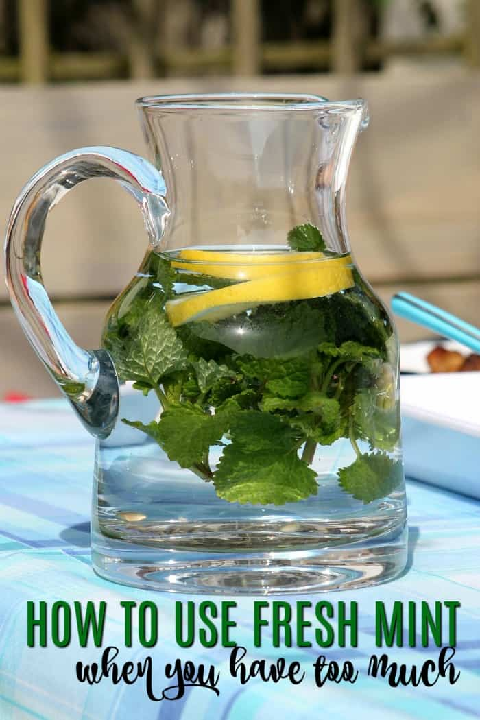 What To Do With Too Much Fresh Mint From the Garden