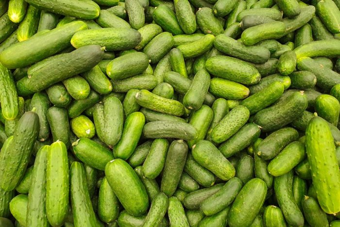 have too many cucumbers? here's what to do with extra cucumbers!