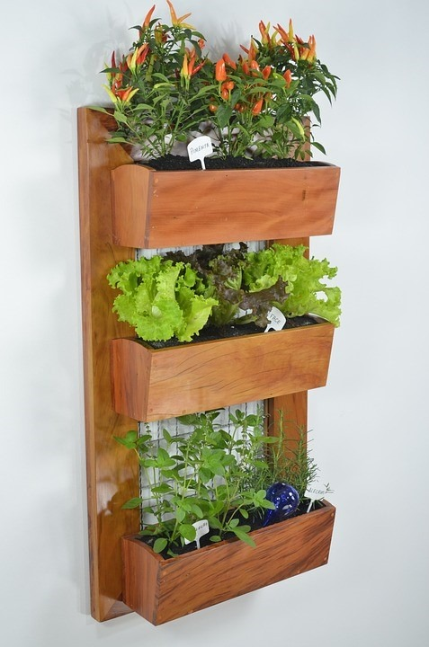 Everything you need to know about vertical gardens | Garden Benches Blog