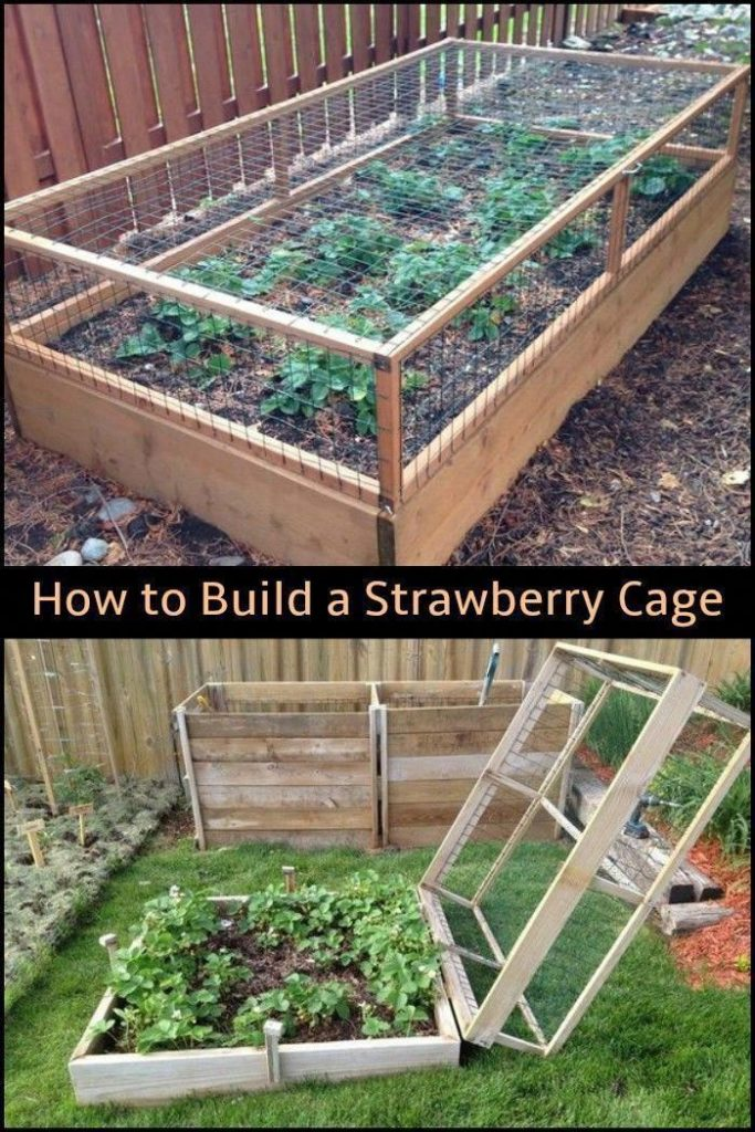 Raised Vegetable Beds – Timber Garden Planters